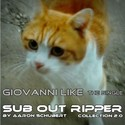 2.3 Giovanni Like by SUB OUT RIPPER