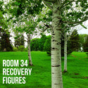 Recovery Figures by Room 34