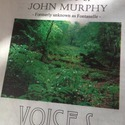 VOICES - GHOST OF JOHN MURPHY by James Michael Taylor