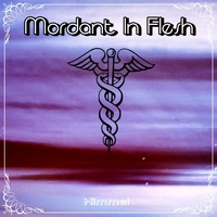 11.Himmel - Single by Mordant In Flesh