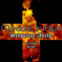 03.Schwarze Asche - Exclusive Single by Mordant In Flesh