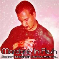 03.Schattenseiten Instrumental by Mordant In Flesh