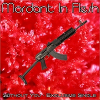 09.Without you - Exclusive Single by Mordant In Flesh