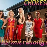microsong hits by chokeslut