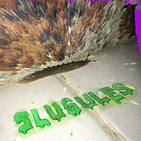 Slugules by The Ants
